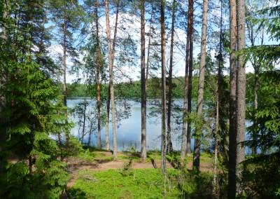 Серебряное озеро селигер
